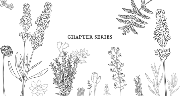 chapter series (1).png