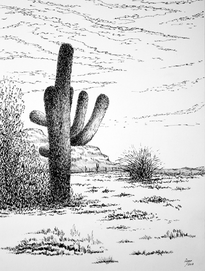 Arizona'sLandscapes.jpg